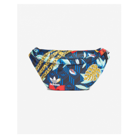 adidas Originals HER Studio London Fanny pack Colorful