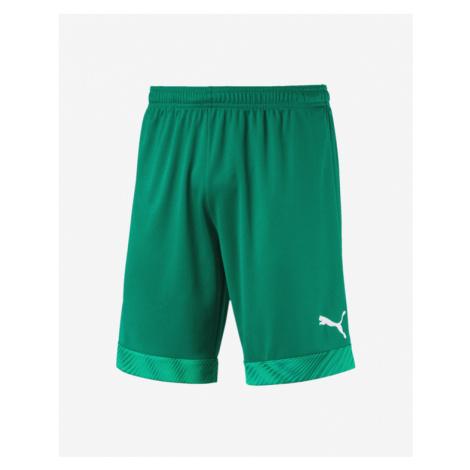 Puma Cup Shorts Green