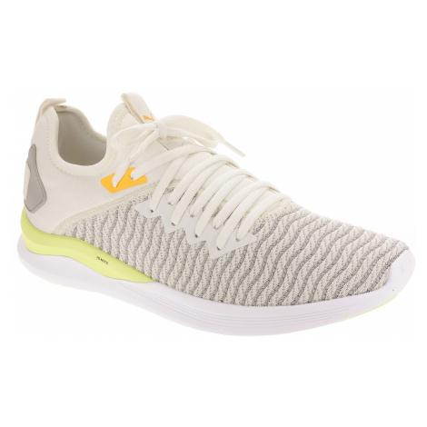 shoes Puma Ignite Flash Daylight - Vaporous Gray/Driz - men´s