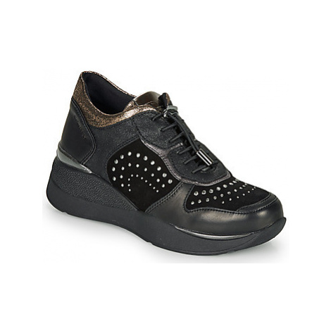 Stonefly ELETTRA 6 women's Shoes (Trainers) in Black