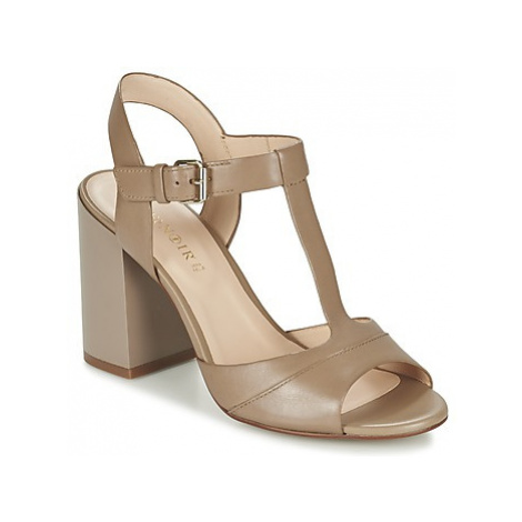 Café Noir GIMOTTI women's Sandals in Brown