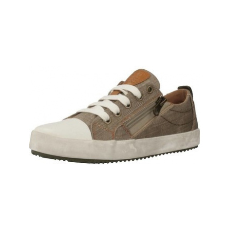 Geox J ALONISSO B. D boys's Children's Shoes (Trainers) in Brown