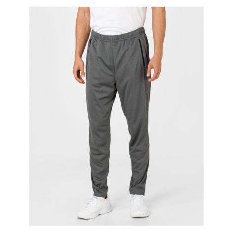 Reebok Speedwick Joggings Grey