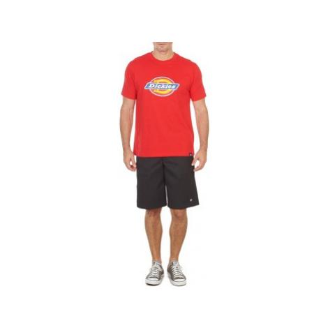 Dickies 13 MULTI POCKET men's Shorts in Black
