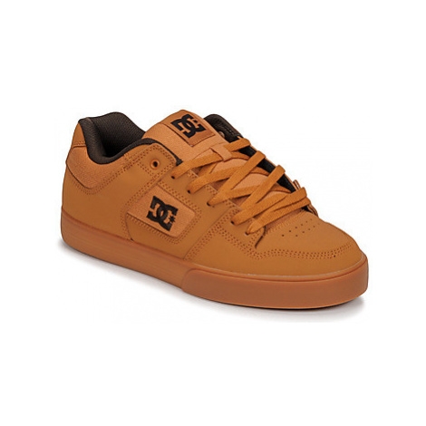 DC Shoes PURE men's Skate Shoes (Trainers) in Brown