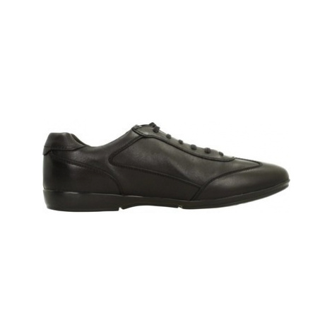 Geox U EFREM men's Shoes (Trainers) in Black