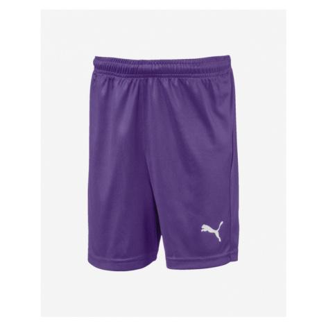 Puma Liga Shorts Core Kids Shorts Violet
