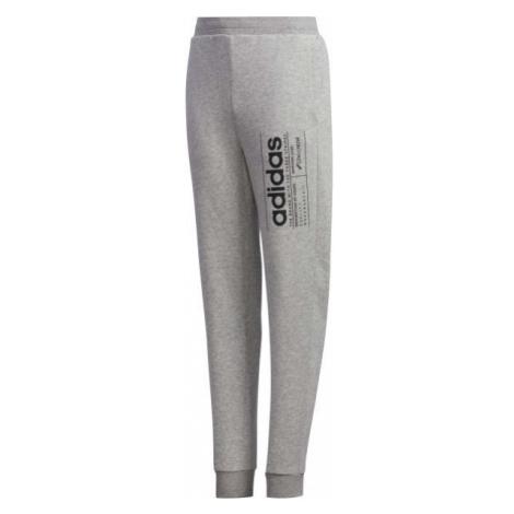 adidas YB BB PNT gray - Boys' sweatpants