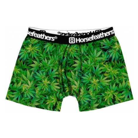 Horsefeathers SIDNEY BOXER SHORTS green - Men's boxers
