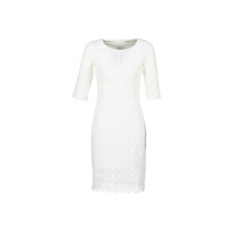 Molly Bracken TOUJIR women's Dress in White