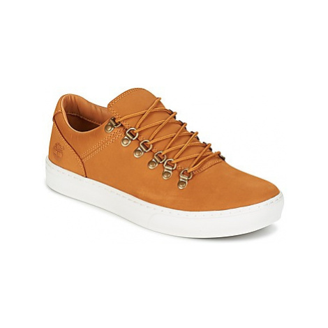 Timberland ADV 2.0 CUPSOLE ALPINE OX men's Shoes (Trainers) in Brown