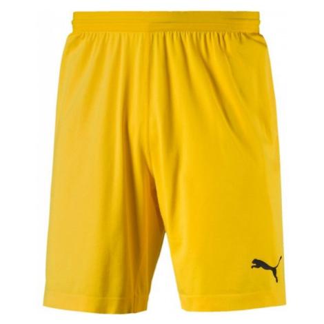 Puma FINAL evoKNIT GK Shorts yellow - Men's goalkeeper shorts