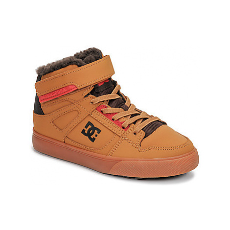 DC Shoes PURE HIGH-TOP WNT EV girls's Children's Shoes (High-top Trainers) in Brown