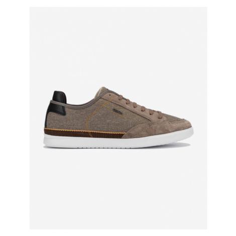 Geox Walee Sneakers Brown