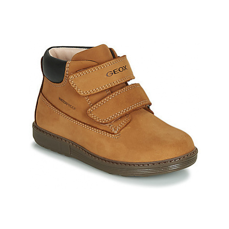 Geox B HYNDE BOY WPF boys's Children's Shoes (High-top Trainers) in Brown