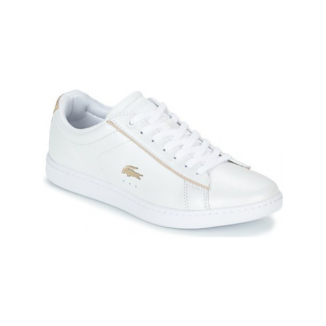 Lacoste CARNABY EVO 118 6 women's Shoes (Trainers) in White
