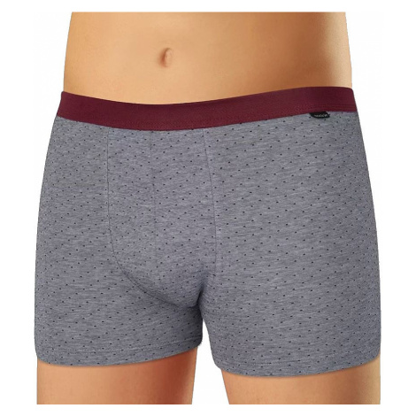 shorts Andrie PS 5337 - Gray/Burgundy - men´s