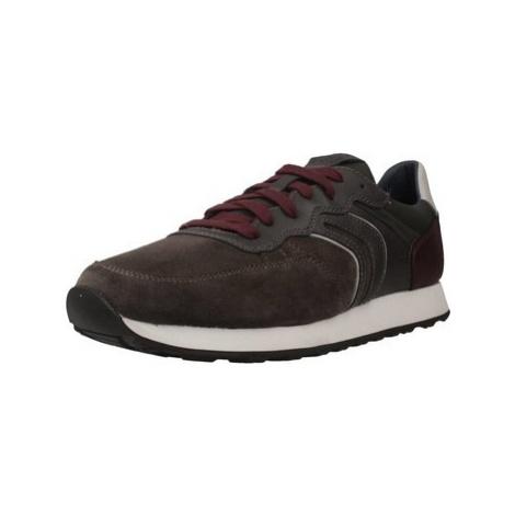 Geox U VINCIT B men's Shoes (Trainers) in Brown