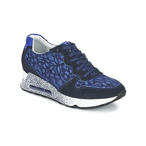 Ash LOVELACE women's Shoes (Trainers) in Blue