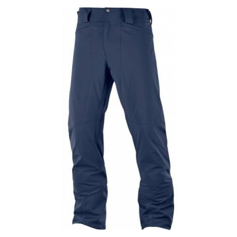 Salomon ICEMANIA PANT M brown - Men's ski trousers