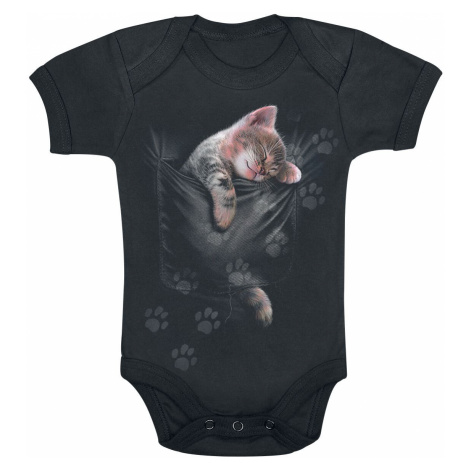 Spiral Pocket Kitten Body black