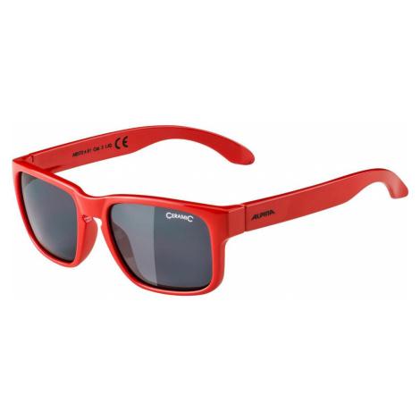 Alpina Sunglasses Mitzo A8572451