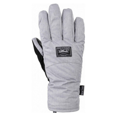 Willard CAPRICE grey - Women's ski gloves