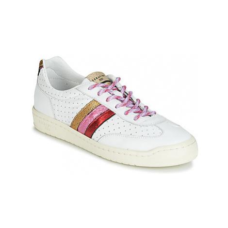Serafini COURT women's Shoes (Trainers) in Multicolour