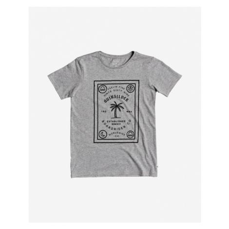 Quiksilver Bad Liar Kids T-shirt Grey