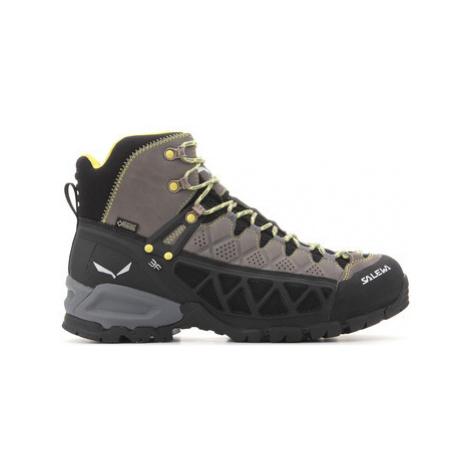 Salewa Domyślna nazwa men's Walking Boots in Multicolour