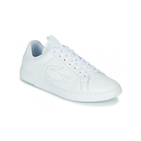 Lacoste CARNABY LIGHT-WT 319 1 SFA women's Shoes (Trainers) in White