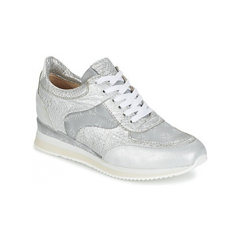 Mjus ZEPPER women's Shoes (Trainers) in Silver