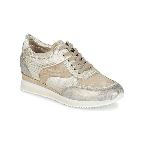 Mjus ZEPPER women's Shoes (Trainers) in Gold