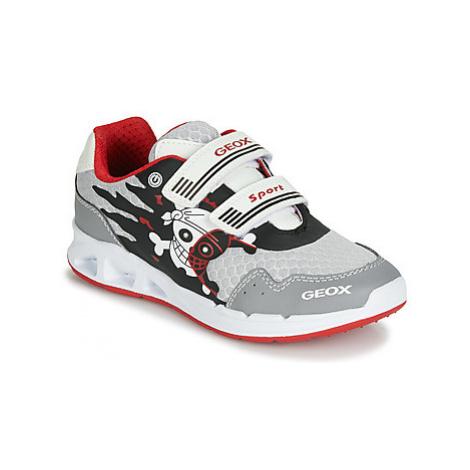 Geox J DAKIN BOY boys's Children's Shoes (Trainers) in Grey