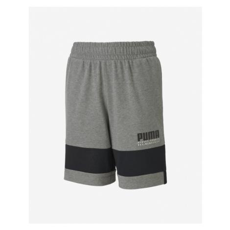 Puma Alpha Kids shorts Grey