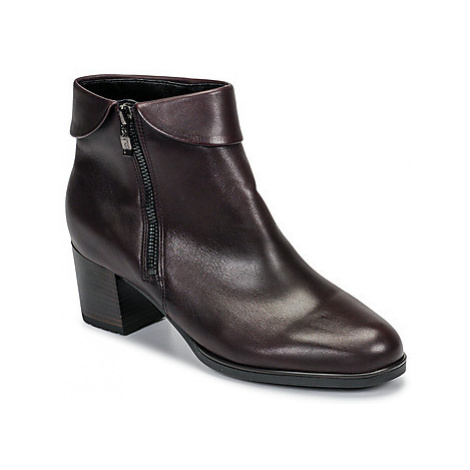 Ara 16913-67 women's Low Ankle Boots in Brown