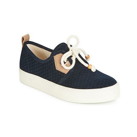 Armistice SONAR ONE women's Shoes (Trainers) in Blue