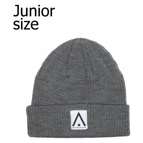 cap CLWR Beanie - Gray - unisex junior