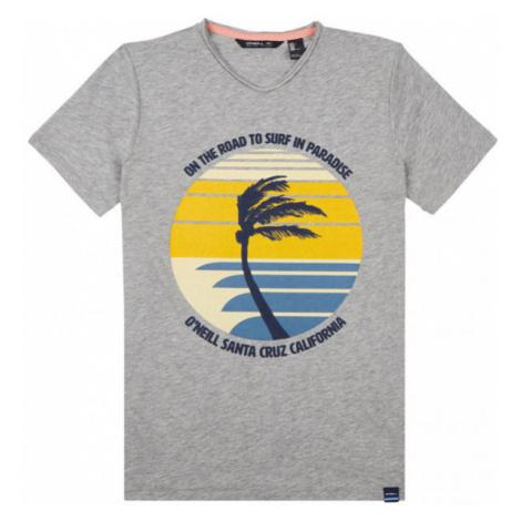 O'Neill LB PALM PRINT T-SHIRT grey - Boys' T-shirt