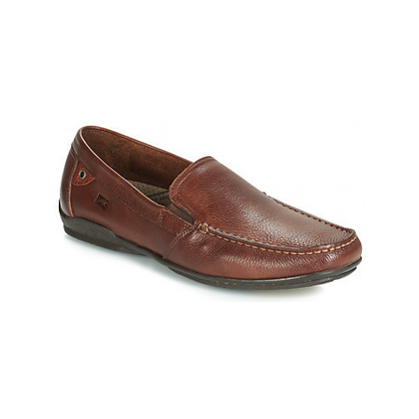 Fluchos BALTICO men's Loafers / Casual Shoes in Brown