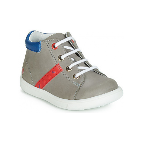 GBB FOLLIO boys's Children's Shoes (High-top Trainers) in Grey