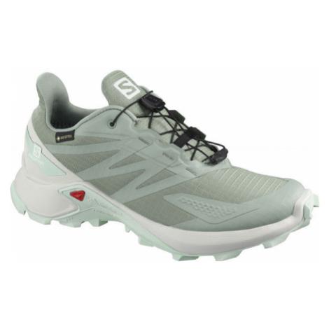 Salomon SUPERCROSS BLAST GTX W - Women's running shoes