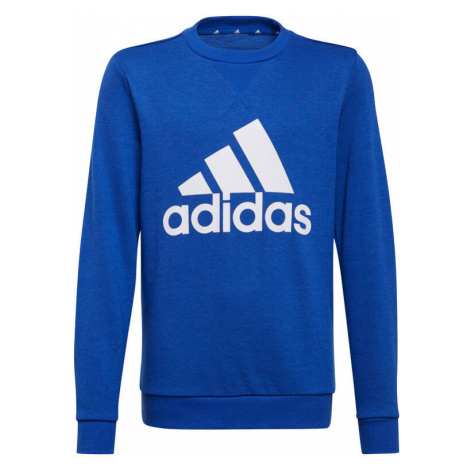 Blue boys' sports pullover sweatshirts and hoodies