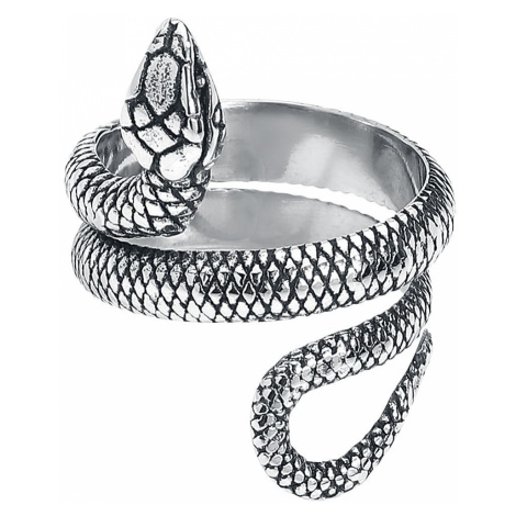 Wildcat Snake Ring Ring silver coloured