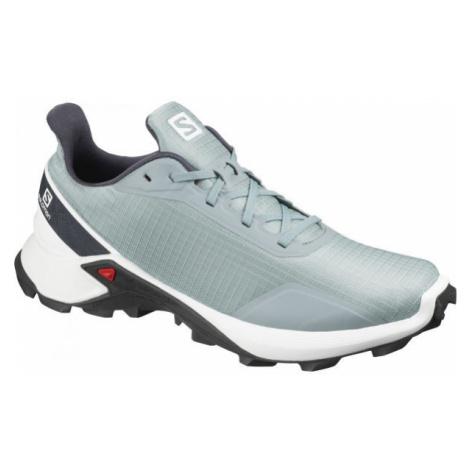 Salomon ALPHACROSS grey - Men's running shoes