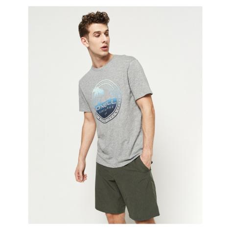 O'Neill Palm Island T-shirt Grey