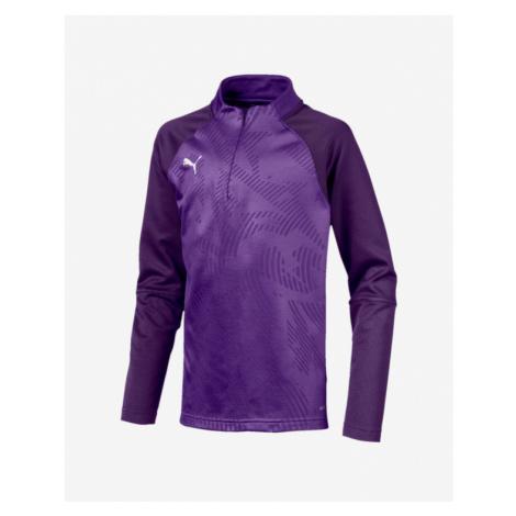 Puma Cup Training Core Kids Sweatshirt Violet