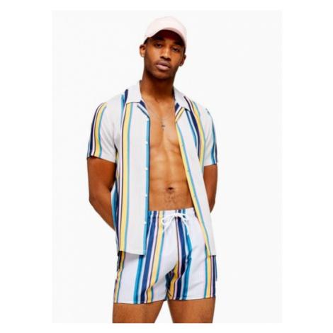 Mens Light Multicoloured Stripe Slim Shirt, Multi Topman