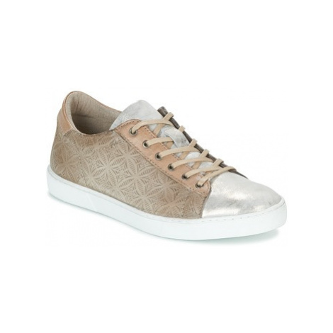 Mjus TOQUESITA women's Shoes (Trainers) in Brown