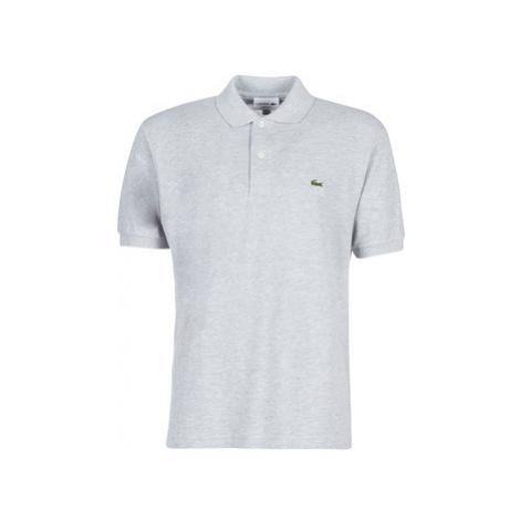 Lacoste POLO L12 12 REGULAR men's Polo shirt in Grey